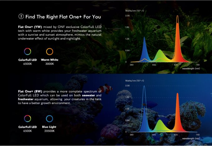 スペクトル比較